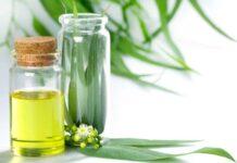 Best Eucalyptus Oils in India