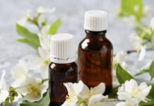 Best Jasmine Oils in India