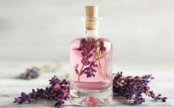 Best Lavender Oils in India