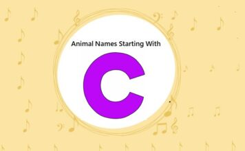 Animal Names That Start with C