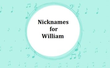 Nicknames for William
