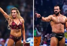 Top 20 Best WWE Wrestlers & Superstar of All Time